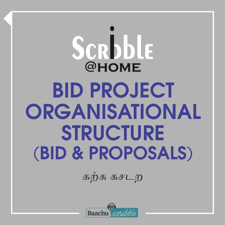 Bid Project Organisational Structure (Bid & Proposals)