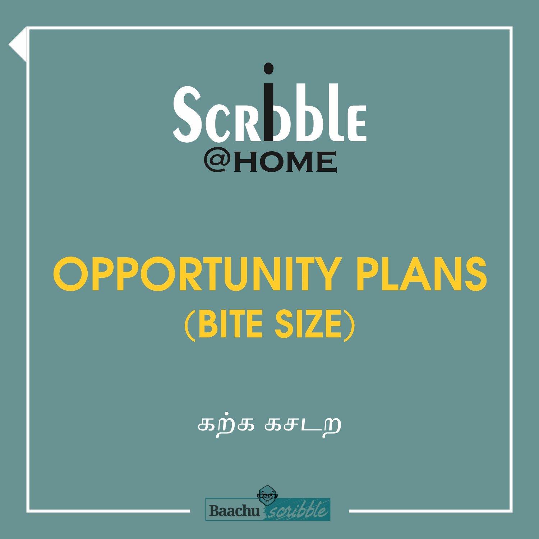 Opportunity Plans (Bite Size)